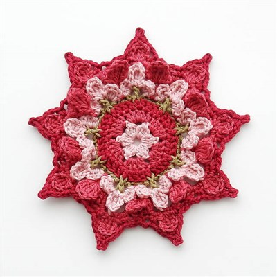 2016-10-13 Flower Patch Coaster 1