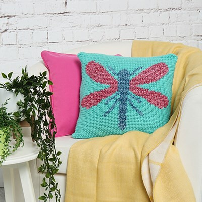 2019-04-06 Daring Dragonfly Cushion